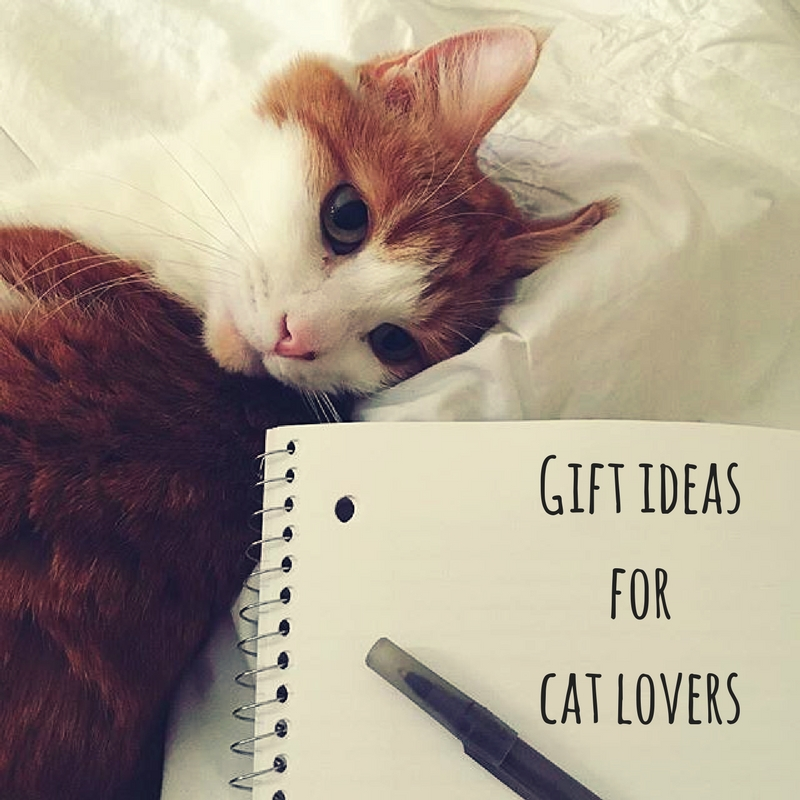 Put cat ears and whiskers on pretty much anything, and you have the makings of a purrfect gift. Here are some cute gift ideas for cat lovers!