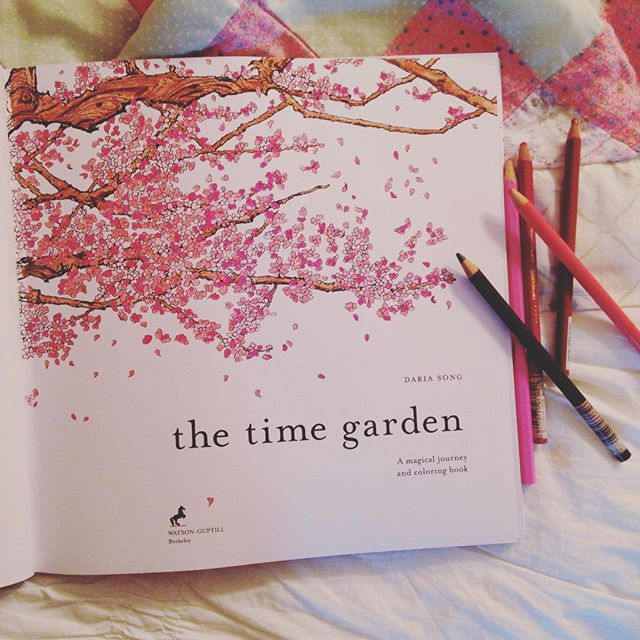 Adult Coloring Books The Time Garden